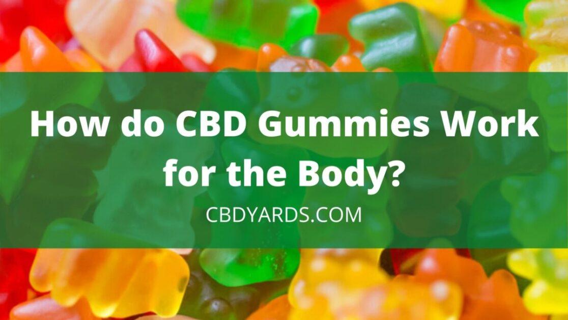 How do CBD Gummies Work for the Body?