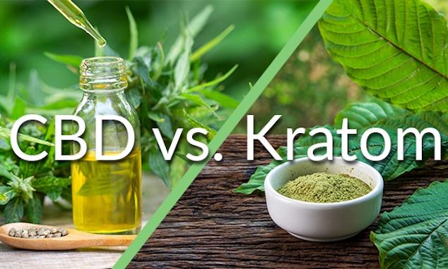 Kratom-vs.-CBD